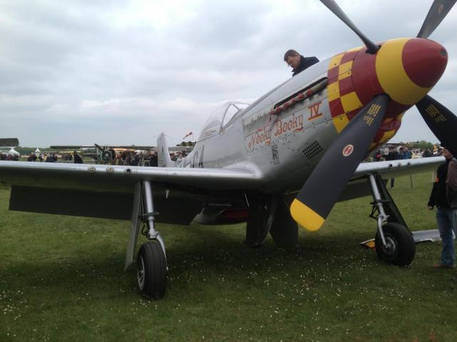 Mustang p 51 d 1