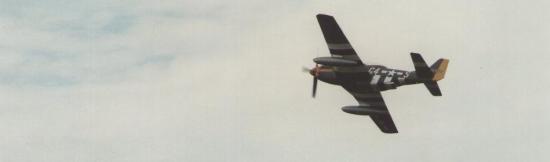 mustang-p-51-e.jpg