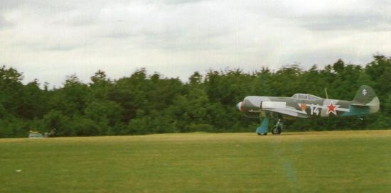 yak-11.jpg